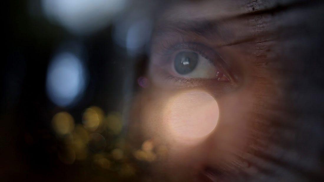 """Från dokumentärfilmen """"My Secret Forest"""", i regi Av Niina Brandt. På bilden syns ett öga som tittar drömskt bortåt."""