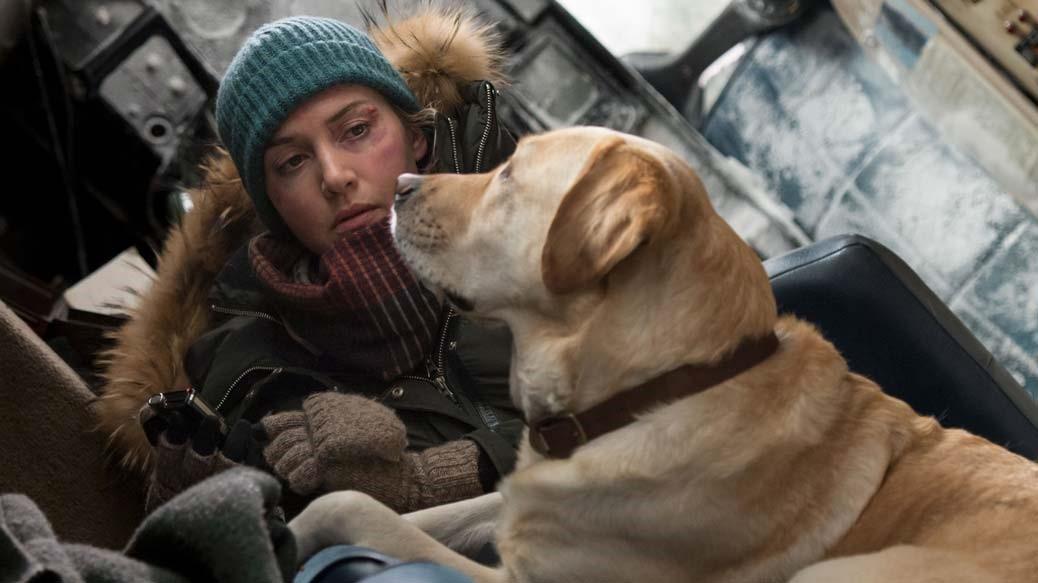 Kate Winslet och hunden Bailay i The Mountain Between