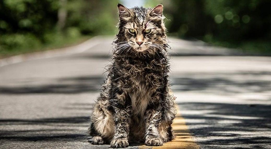 En ond katt