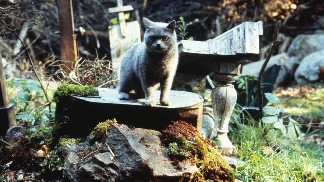 Stillbild ur Jurtjyrkogården från 1989.