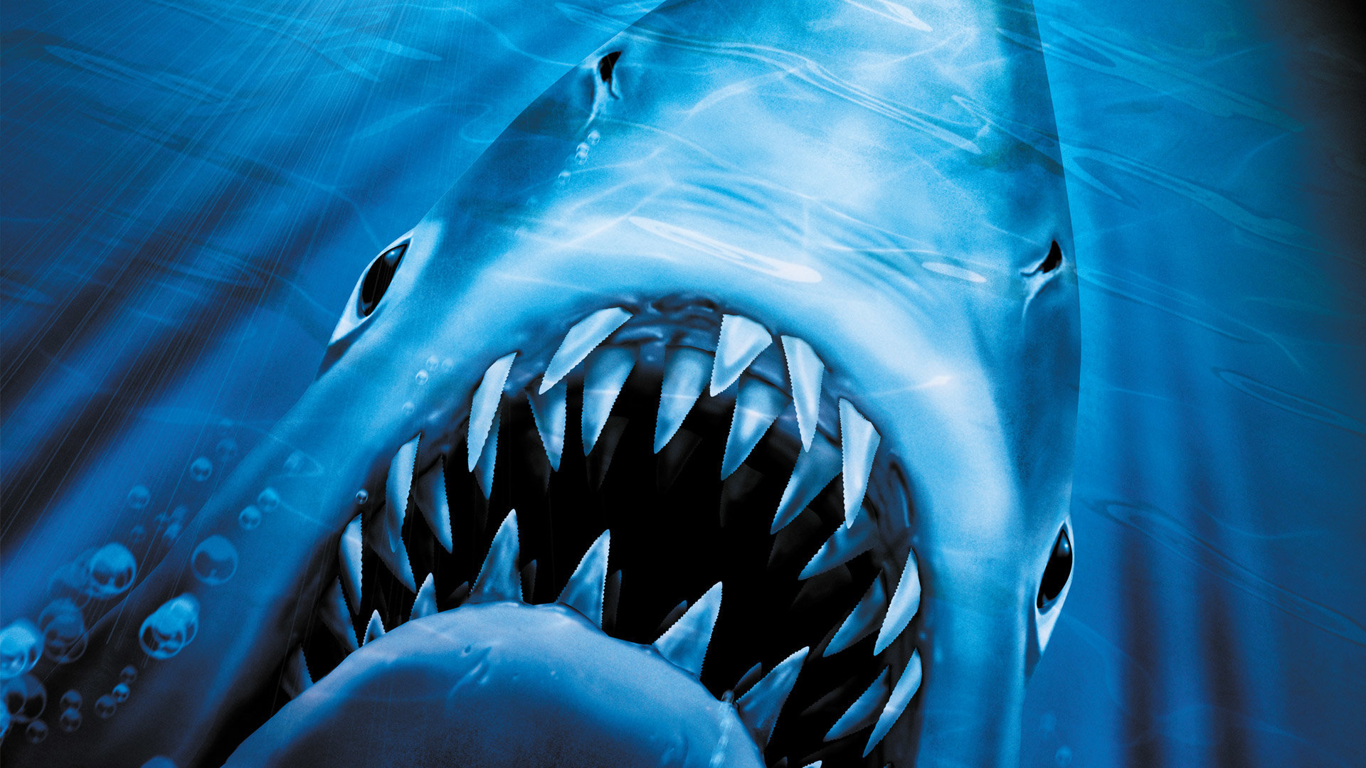 Jaws 2 cover