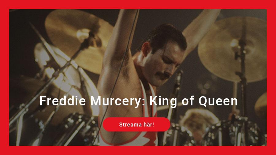 Freddie Mercury King of Queen
